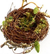 Bird Nest - Product Image