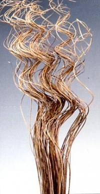 Ting Ting Twisted - Natural - Product Image
