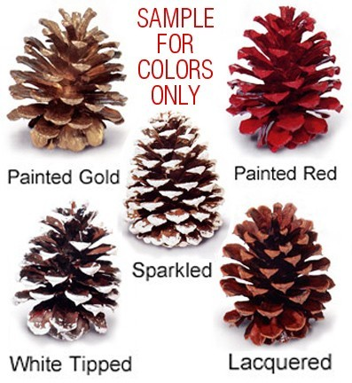 Red Pine Painted - Product Image