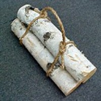 White Birch Logs Bundled - Product Image