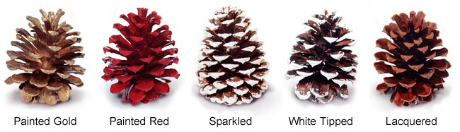 Painted, sparkled, and scented pine cones